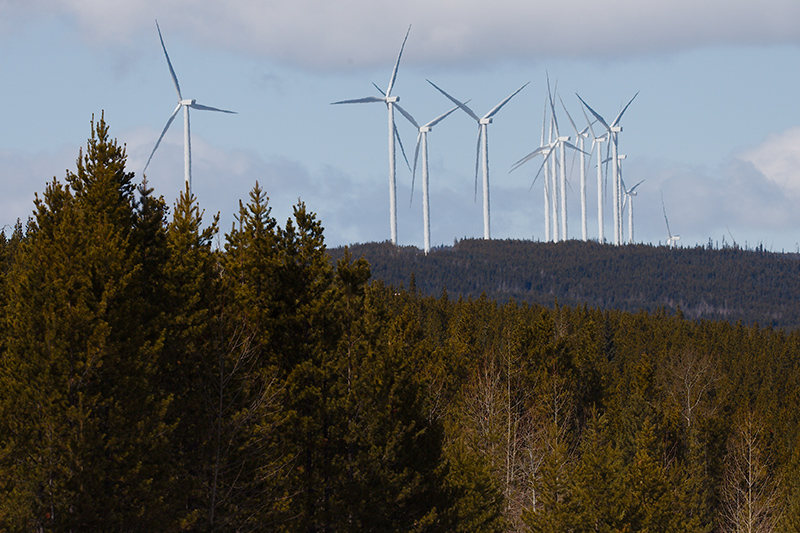 tumbler ridge clean energy